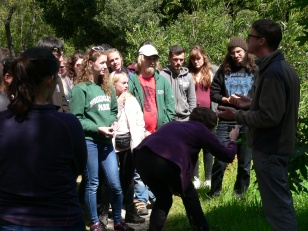 Teaching students botany in Portugal, April 2016