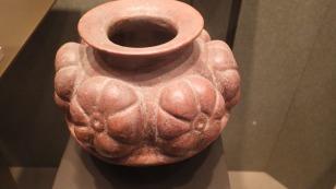 Peyote on a pot.