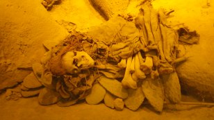 Reconstructed burial with corpse placed on a pile of Opuntia pads.