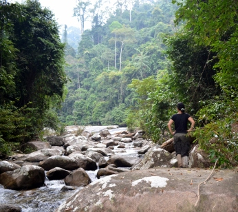 My PhD student Saifon in Krau Wildlife Reserve, Malaysia