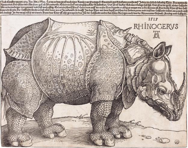The_Rhinoceros_(NGA_1964.8.697)_enhanced
